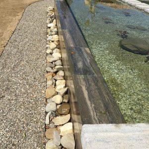 Bio-piscina in Travertino Silver7